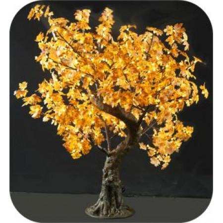 Tree Maple 1.45M Yellow